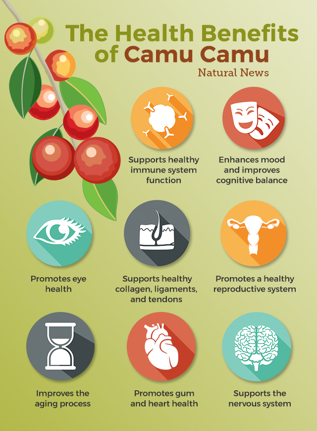 fuxion the benefits of camu camu