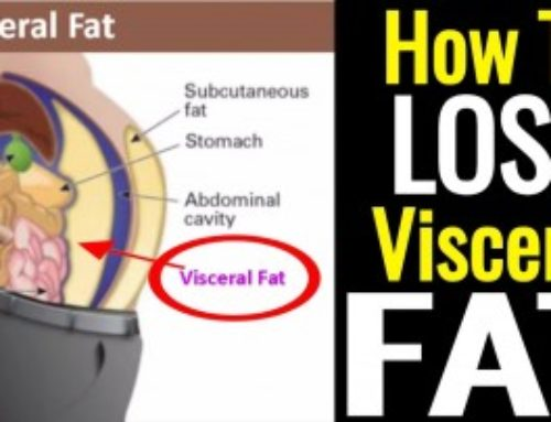 How to Lose Visceral Fat – It is Not as Hard as You Think!